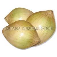 Fresh Sweet Onion