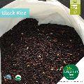Organic Black Rice