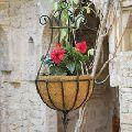 Metal wire hanging basket
