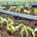 12mm drip irrigation pipes