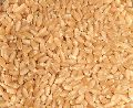 Soft Milling Wheat