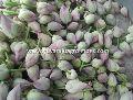 Lotus Cut Flowers