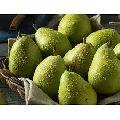 Fresh Sweet Pears