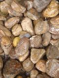 BIDASAR BROWN PEBBLES