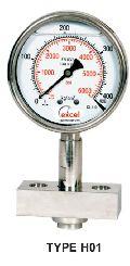 HDS Diaphragm Sealed Type Pressure Gauges