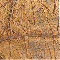 Rainforest Gold Antique Finish marble