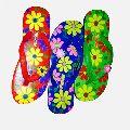 Ladies Hawai slipper