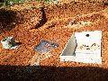 Fero Cement biogas plants