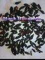 Black Fruits himej