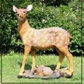 Wonderland dotted Deer 22 inches tall real looking for home