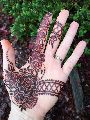 Black Henna for Body Art (BAQ henna)
