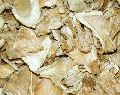 Dried Premium Oyster Mushroom