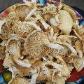 Dried White Oyster Mushroom
