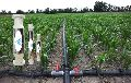 Water Softener for agriculture