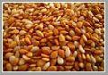 Roasted / Toasted Sesame seeds