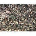 Dry Tulsi Herbal Leaves