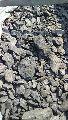 Ranigunge Steam Coal