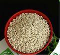 NPK 20:10:10 Water Soluble Fertilizer