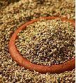 Pure Ajwain Seeds
