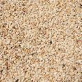 Natural White Sesame Seeds