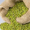 Indian Bazaar Best Quality green gram Pulses