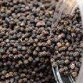 Raw Black Pepper Seeds