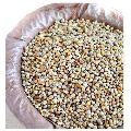 Natural Pearl Millet Seeds