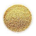 Indian Foxtail Millet