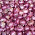 Fresh Rose Onion