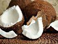 Organic Coconut