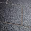 Cuddapah Limestone