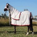 Summer Sheet Horse Rugs