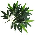 Artificial Bamboo Leaves