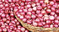 Fresh Red Small Onion