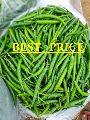 Fresh Indian Green Chilli