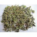 Dried Tulsi Leaves