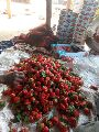 Fresh Natural Strawberry