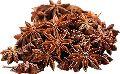 Raw Star Anise Seeds