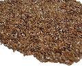 Alsi Seeds