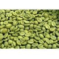 organic green coffee beans