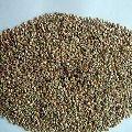Dried Potato Seeds