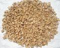 Dry Chicory