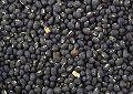 Black Moong Beans