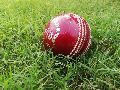 Sizzling leather cricket ball