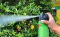 Plant Pesticides