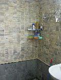 Indian Autumn Mosaic Tiles
