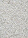 Sharbati Tibar Raw Rice