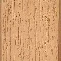 Rustic Exterior Texture Paint