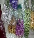 Mokara Orchid Flowers