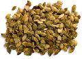 Cinnamon Seeds